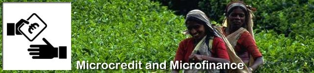 The GRDC Research Programme on Microfinance